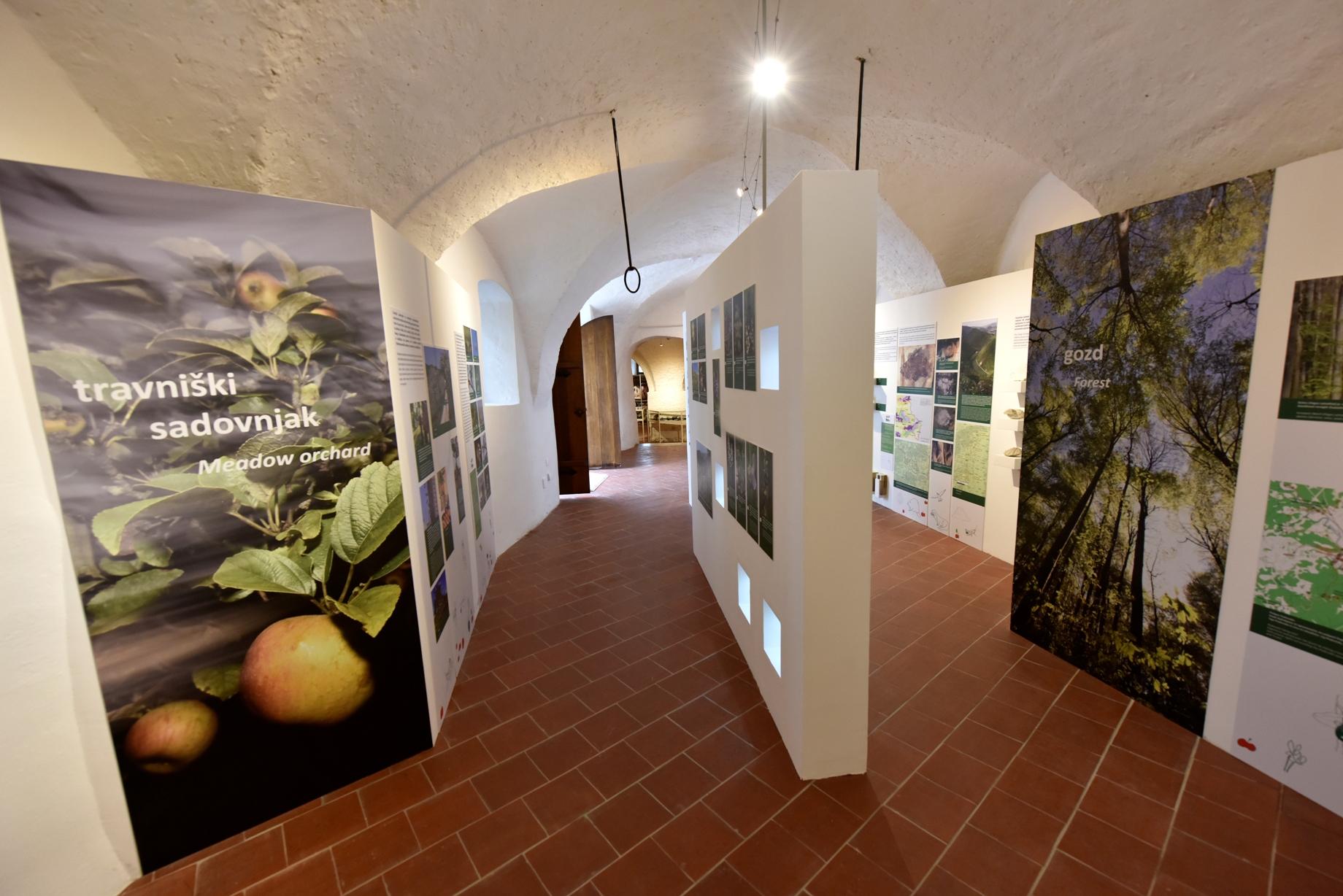 info-centerss