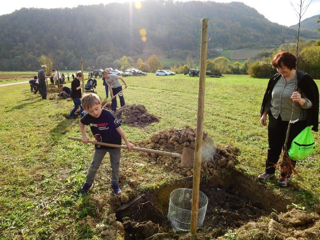 Zasaditev-drevored-20.10-11