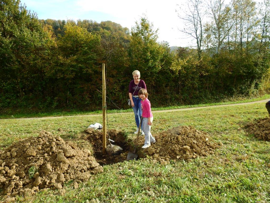 Zasaditev-drevored-20.10-15