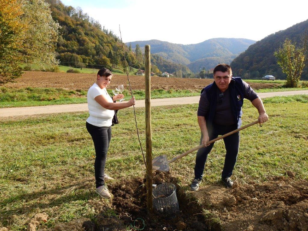 Zasaditev-drevored-20.10-4
