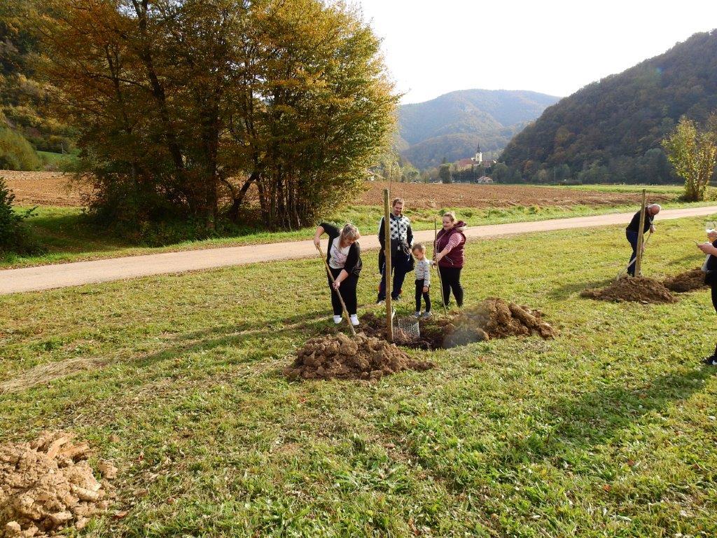 Zasaditev-drevored-20.10-7