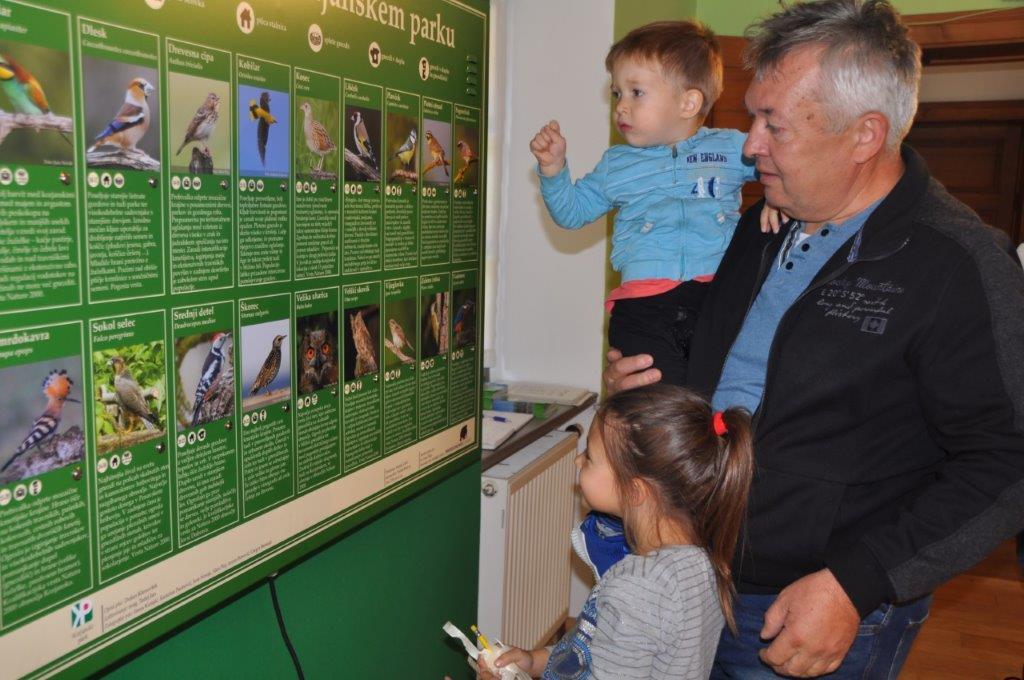 razstava-Kozjanske-ptice-PKJ-2019-bp